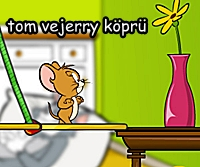 Tom ve Jerry Oyunu Köprü Kur